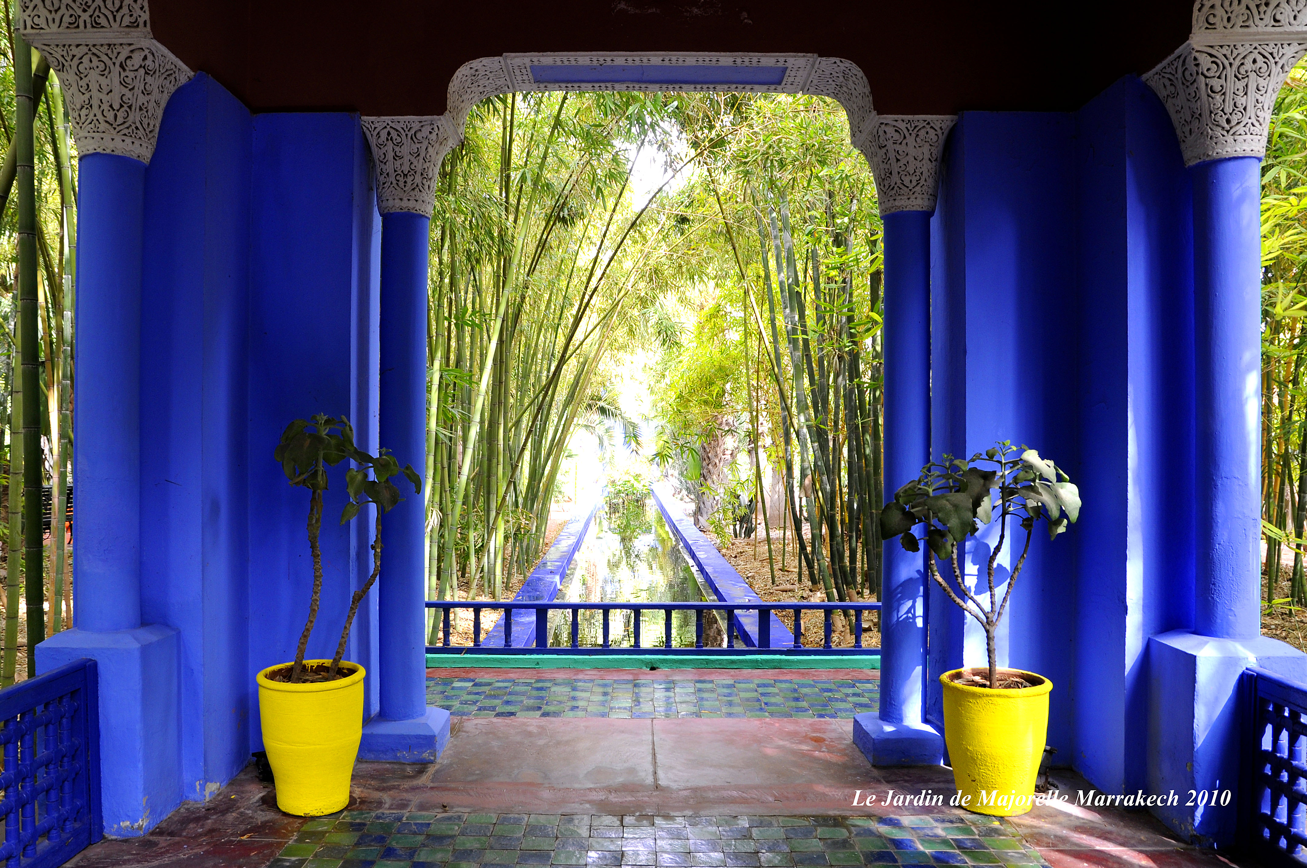 le jardin de majorelle marrakech. Black Bedroom Furniture Sets. Home Design Ideas