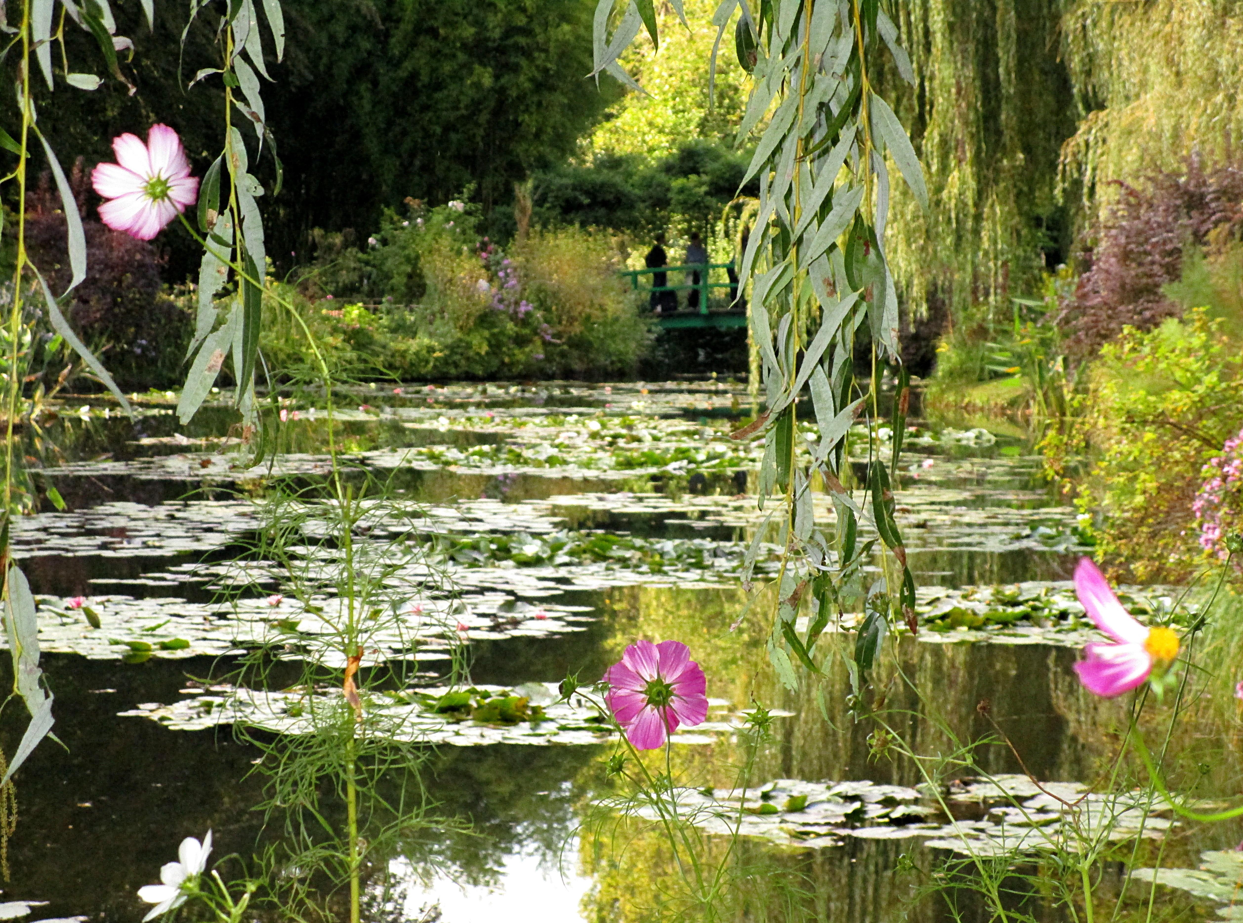 Les nymph as de claude monet giverny for Le jardin de violette