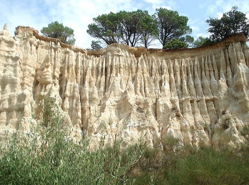 Les Orgues A Ille Sur Tet Pyrenees Orientales