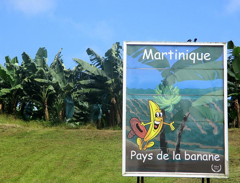 Résultat d'images pour banane en guyane